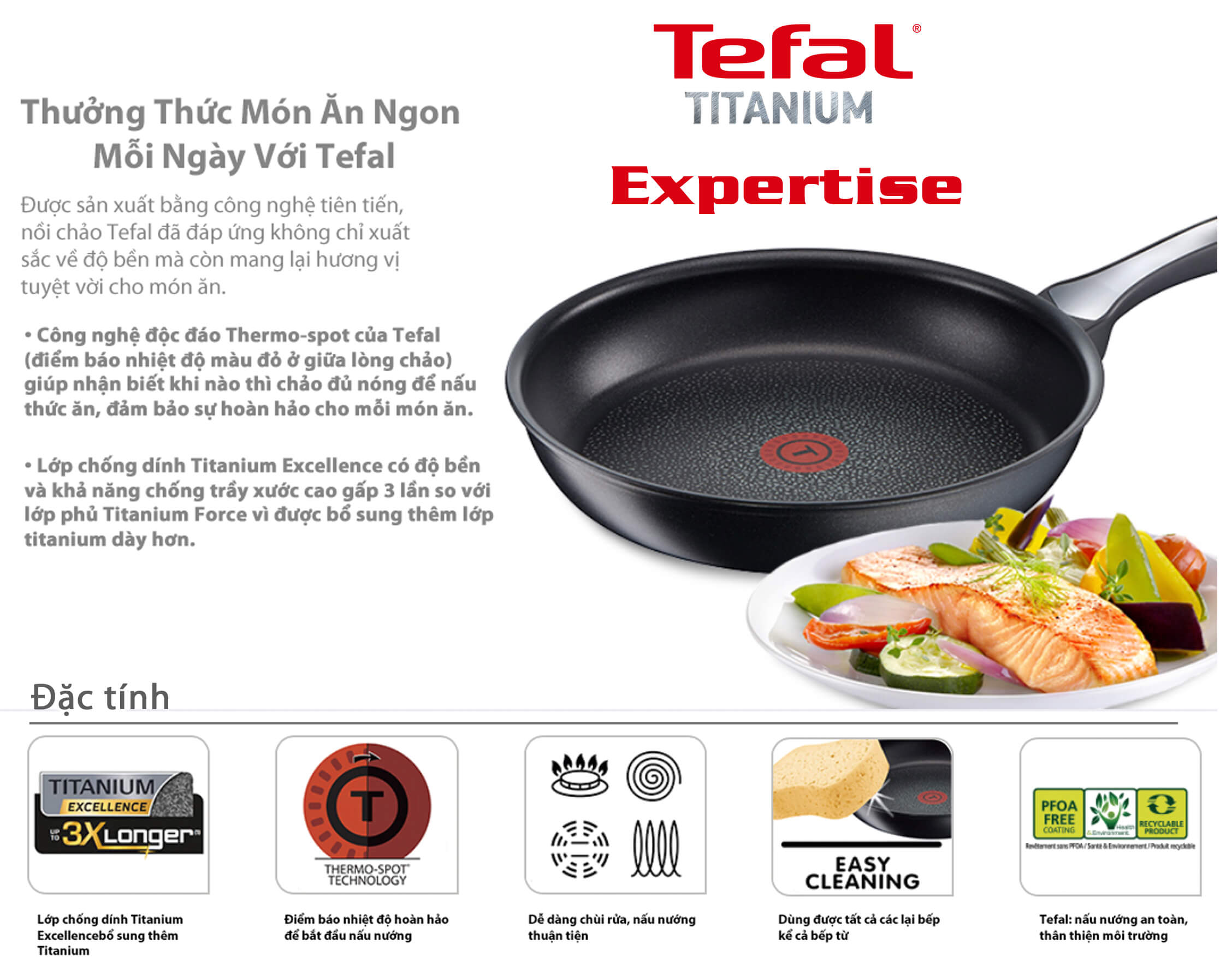 Chảo chống dính Tefal Expertise 24cm h2