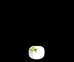 Chén thủy tinh vuông 115 Diva Ivory S.D (La Opala)