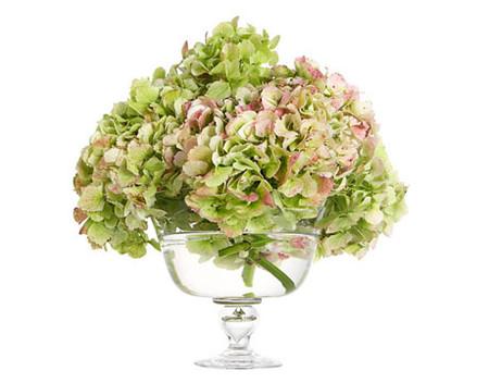 Bình cắm hoa thuỷ tinh - Sapakitchen